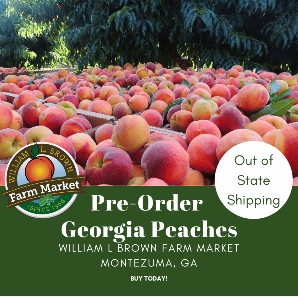 Order Georgia Peaches for Out of State Delivery