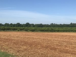 How to prep farm fields for good harvests every year